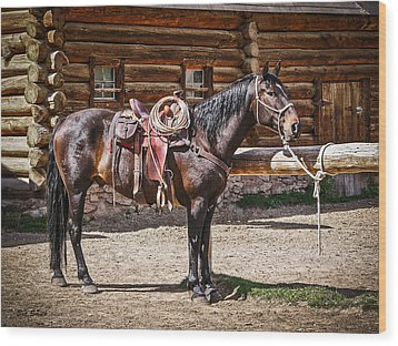 Saddled And Waiting Wood Print by Sue Smith