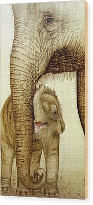 Safe Haven Wood Print by Roger Storey
