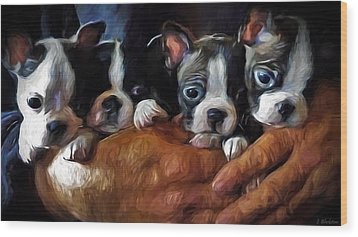 Safe In The Arms Of Love - Puppy Art Wood Print by Jordan Blackstone