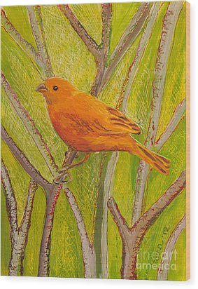 Saffron Finch Wood Print by Anna Skaradzinska