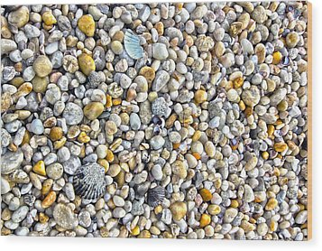 Sag Harbor Rocky Bay Beach Wood Print