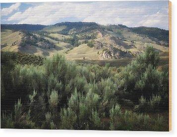 Sagebrush Wood Print by Marty Koch