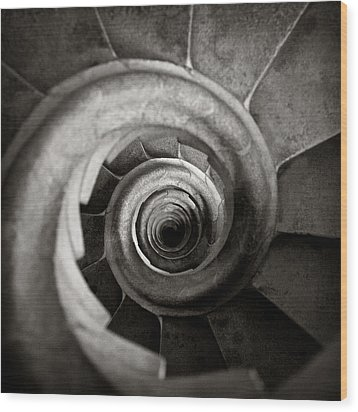 Sagrada Familia Steps Wood Print by Dave Bowman