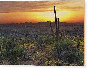 Saguaro And The Setting Sun Wood Print