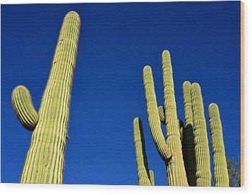 Wood Print featuring the photograph Saguaro National Forest Tucson Az by Diane Lent