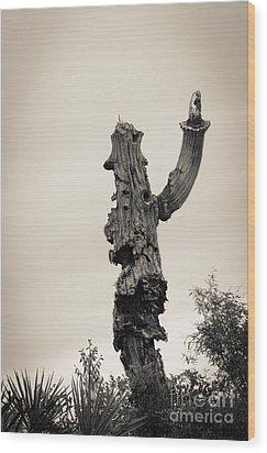 Saguaro Salute Wood Print by Tamara Becker