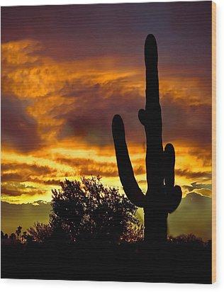 Saguaro Silhouette  Wood Print by Robert Bales
