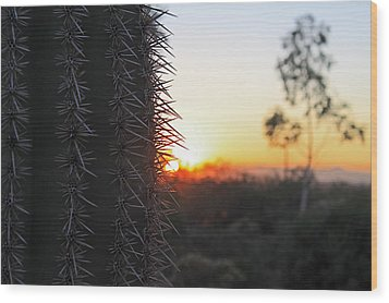 Wood Print featuring the photograph Sagurao Sunset by Gary Kaylor