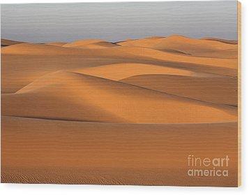 Sahara Desert Dunes Wood Print by Robert Preston