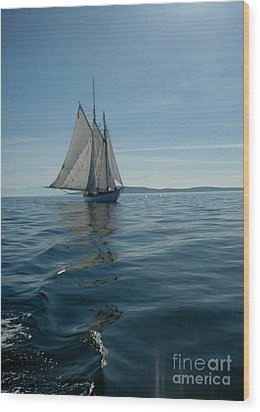 Sail The Blue Wood Print by NightVisions