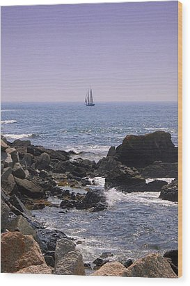 Sailboat - Maine Wood Print