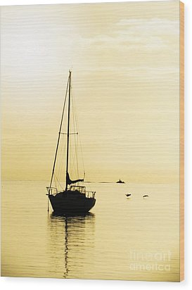 Sailboat With Sunglow Wood Print by Barbara Henry