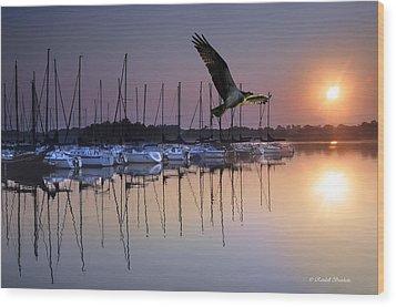 Sailboats Osprey Sunrise Wood Print by Randall Branham