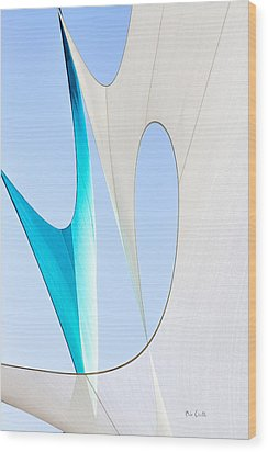 Sailcloth Abstract Number Twenty Wood Print by Bob Orsillo