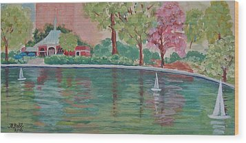 Sailin' Away In Central Park Wood Print