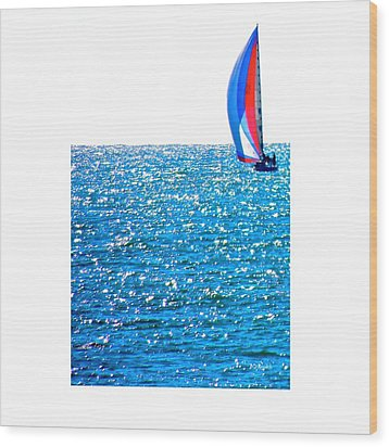 Sailing Wood Print by Brian D Meredith