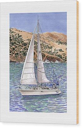 Sailing Catalina Island Sailing Sunday Wood Print by Jack Pumphrey