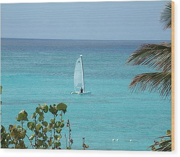 Wood Print featuring the photograph Sailing by David S Reynolds