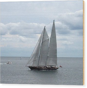 Sailing Day Wood Print by Catherine Gagne