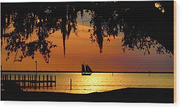 Sailing Destin Wood Print