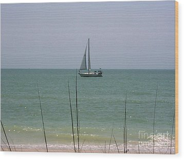 Wood Print featuring the photograph Sailing In The Gulf by D Hackett