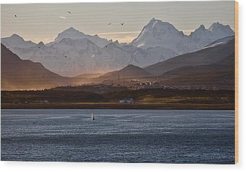 Sailing On The Beagle Channel Wood Print by June Jacobsen