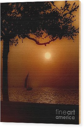 Sailing Sunset Wood Print