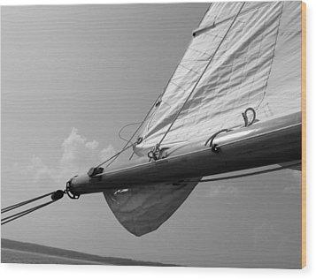 Sailing Wood Print by Tony Grider