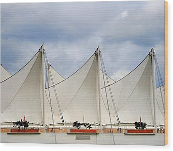Sails Wood Print by Alison Miles