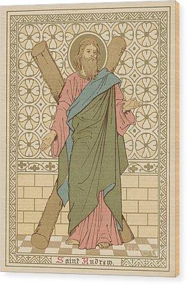Saint Andrew Wood Print by English School