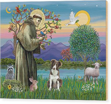 Saint Francis Blesses A Brown And White Border Collie Wood Print