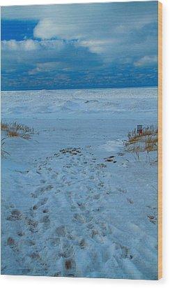 Saint Joseph Michigan Beach In Winter Wood Print by Dan Sproul