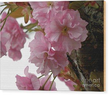 Sakura Wood Print by Laura Yamada
