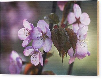 Sakura Wood Print by Vetre Antanaviciute Meskauskiene