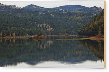 Salam  Lake Wood Print by Larry Stolle