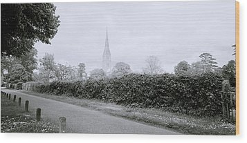 Salisbury Cathedral Wood Print by Shaun Higson