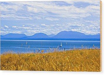 Salish Sea From Hornby Island Wood Print by Brian Sereda