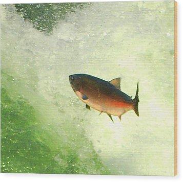 Salmon Run 1 Wood Print by Mamie Gunning