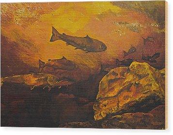 Salmon Run Wood Print by Terry Gill