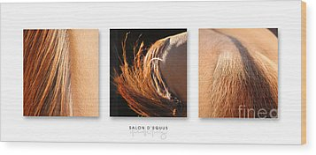 Salon D'equus Dark Wood Print