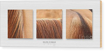 Salon D'equus Light Wood Print