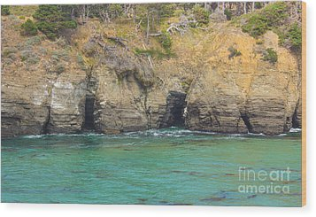 Salt Point Sea Caves Wood Print by Suzanne Luft