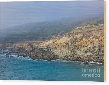 Salt Point State Park Coastline Wood Print by Suzanne Luft