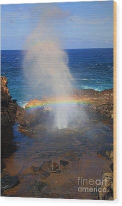 Salt Spray Rainbow Wood Print by Mike  Dawson