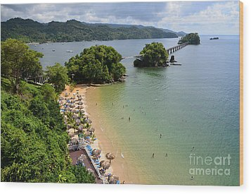 Wood Print featuring the photograph Samana In Dominican Republic by Jola Martysz