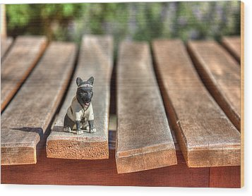 Wood Print featuring the photograph Samurai Pooch by Dave Garner