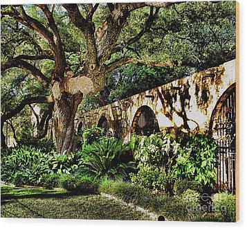 San Antonio D Wood Print