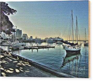 San Diego Harbor Wood Print
