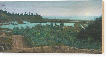 San Elijo Lagoon Wood Print