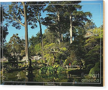 San Francisco Golden Gate Park Japanese Tea Garden 11 Wood Print by Robert Santuci